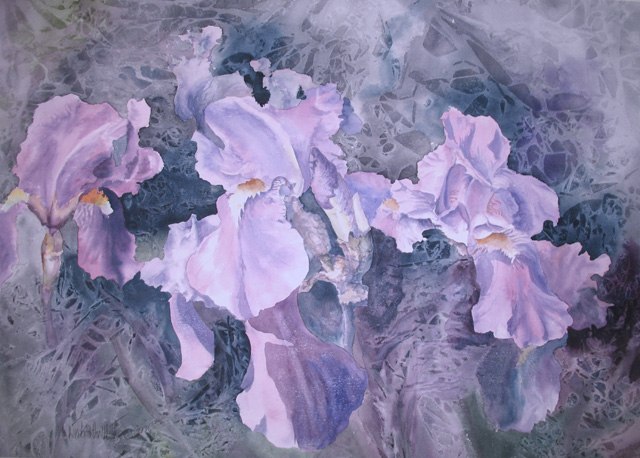 frosted_iris (1)