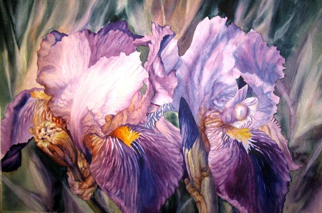 purple_passion_1