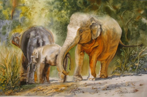 Elephant Walk, Watercolor